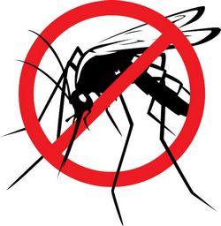 Информация для населения по профилактике малярии