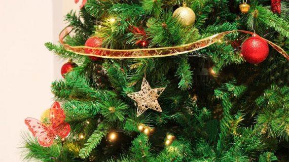 График работы в новогодние праздничные дни